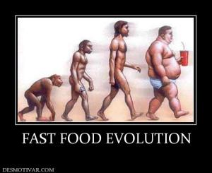 11555_fast_food_evolution