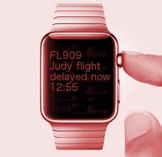 judy flight delayed