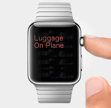 luggage on plane